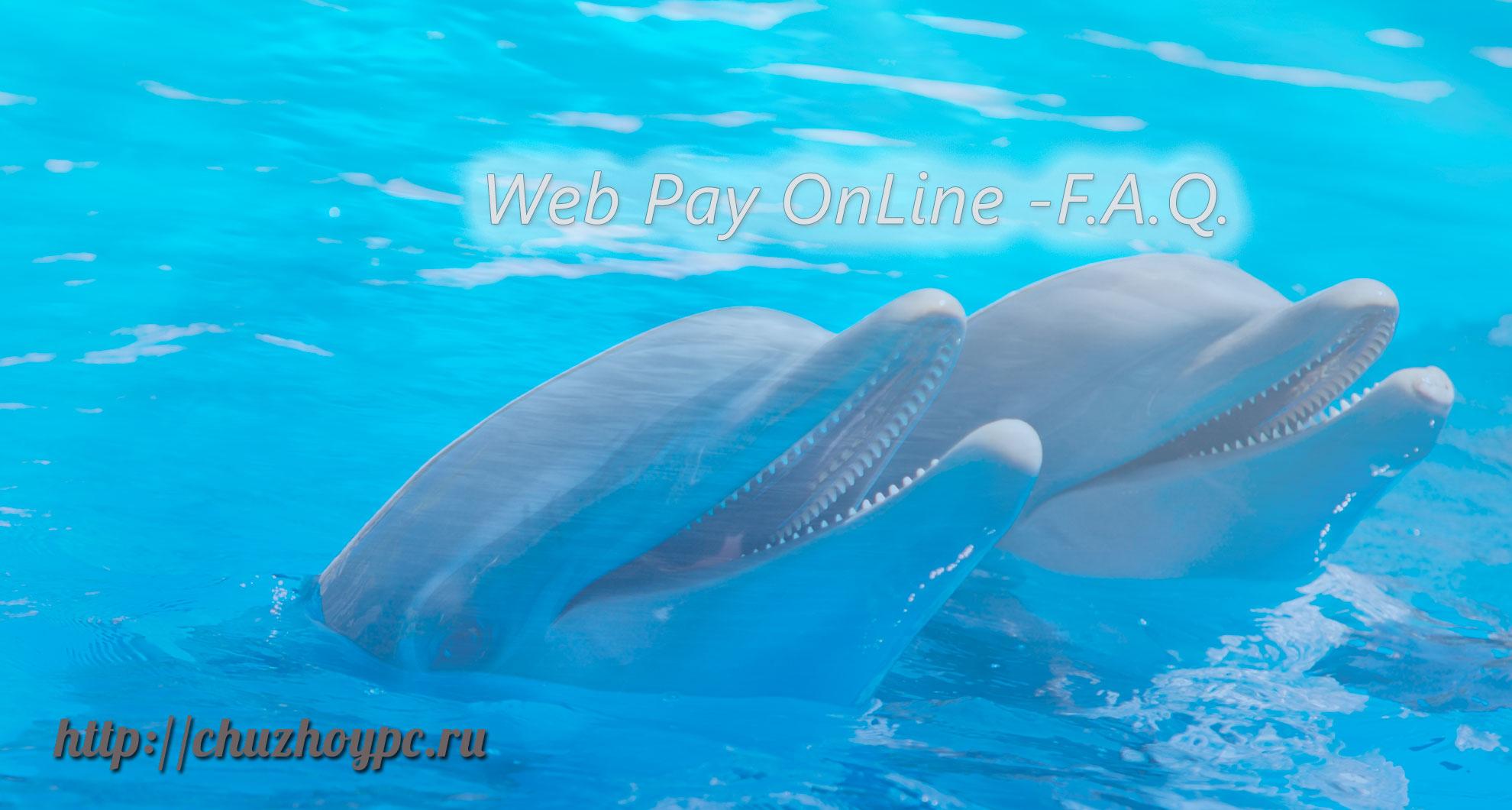 WEB Payment Methods Online